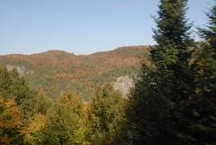 DSD_7718 (Greying_Geezer) Tags: autumn ontario canada fall colors colours scenic trains autumncolours railways railroads saultstemarie on algoma agawacanyon traintour