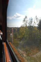 DSD_7806 (Greying_Geezer) Tags: autumn ontario canada fall colors colours scenic trains autumncolours railways railroads saultstemarie on algoma agawacanyon traintour