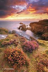 UK - England - Land's End (Jarrod Castaing) Tags: ocean uk travel sunset sea england sky clouds landscape rocks cornwall arch cliffs landsend wildflowers jarrodcastaing wwwjarrodcastaingcom
