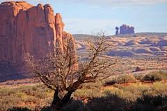 USA, Arches National Park - Canyonland - Day 6 - April 2011 (RomainDS) Tags: usa reflex unitedstates moab archesnationalpark rds etatsunis canyonland canon60d romaindasilva