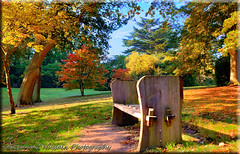 Virginia Waters (Muzammil (Moz)) Tags: uk autumn london fall garden moz virginiawaters muzammilhussain