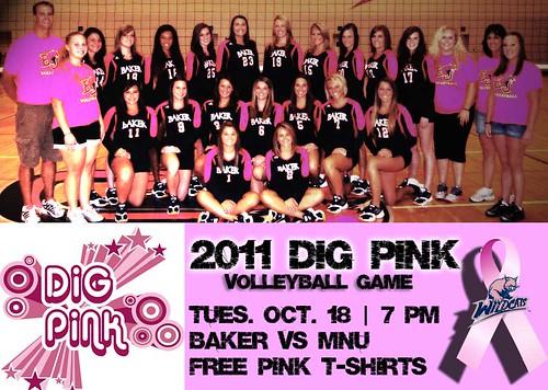 2011 Dig Pink Game