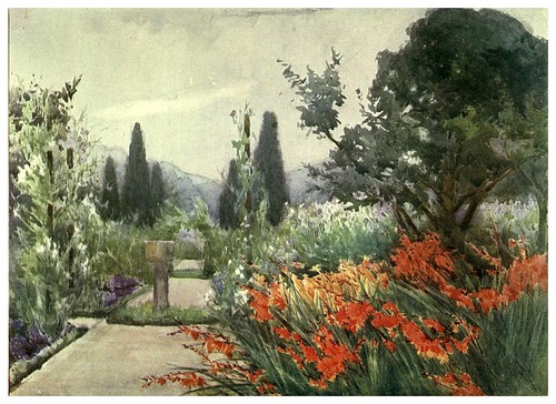 024- Varas de San Jose y guisantes dulces en otoño-Escocia- Flower grouping in English, Scotch & Irish gardens 1907- Margaret Waterfield