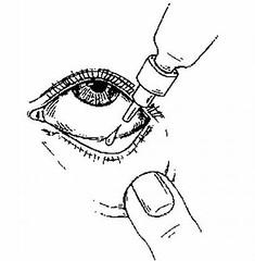 eye__oPt