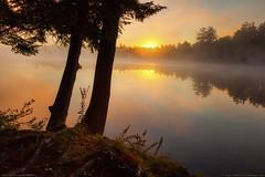 Echo Lake, Fayette, Maine (Greg from Maine) Tags: morning trees nature fog forest sunrise reflections landscape maine roots newengland fayette echolake morningmist kennebeccounty faytettemaine