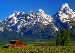 USA - Wyoming - Grand Teton National Park (Jim Strachan) Tags: grandtetonnationalpark
