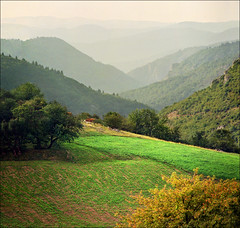 Infinite green layers (Katarina 2353) Tags: travel trees summer vacation mountain green film nature grass fog landscape photography nikon europe view place image you serbia paisaje x hills number thank stats fields layers statistics account paysage visits priroda infinite levels photostream srbija flocks tjkp 2011 sumadija pejza 8000000 katarinastefanovic katarina2353 gettylicense