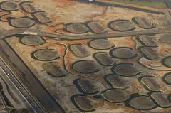 Above mudflats under reconstruction, San Mateo County, California (cocoi_m) Tags: california saltpond restoration sanfranciscobay eastpaloalto ravenswood aerialphotograph sanmateocounty dumbartonbridge saltevaporationpond southbaysaltpondrestorationproject