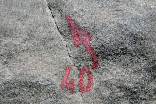 Red 40