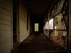 in the woods (History Rambler) Tags: old house abandoned home rural south northcarolina hidden forgotten plantation lonely antebellum federal decayed notrespassing edgecombecounty notrespassingandyet youreonetotalk
