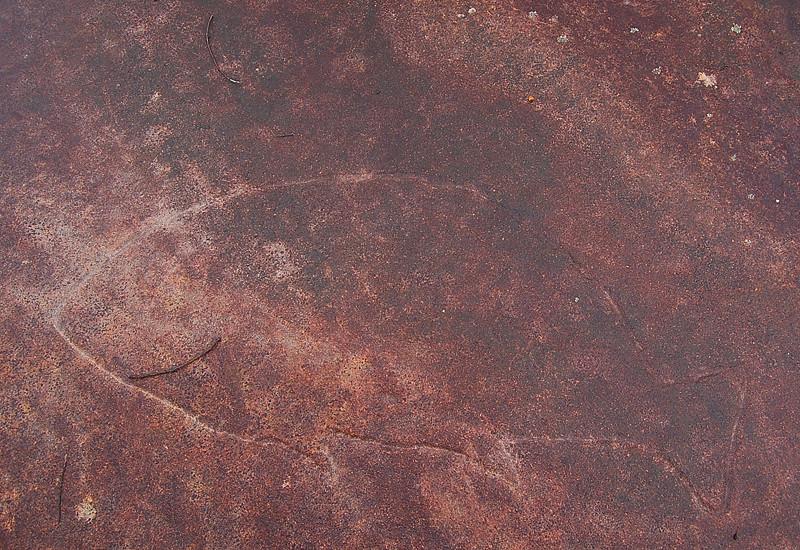 _aboriginal_picture--fish_