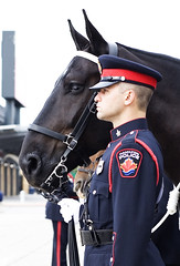 Trooper & Preston (Metro Tiff) Tags: horses horse toronto ontario canada north hamilton police american mounted belgian championships equestrian officer services draft hps unit mpu napec