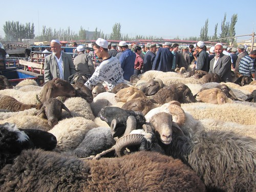 Animal market, Kashgar