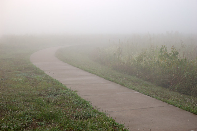 Columbia Bottom Conservation Area, in Saint Louis County, Missouri, USA -  path in fog