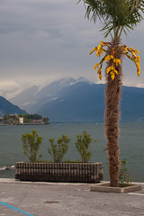 "Stresa Shoreline • <a style=""font-size:0.8em;"" href=""http://www.flickr.com/photos/55747300@N00/6174637219/"" target=""_blank"">View on Flickr</a>"