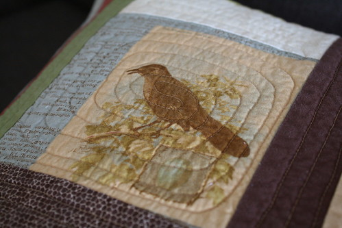 Birds Encyclopedia - Floor pillow covers