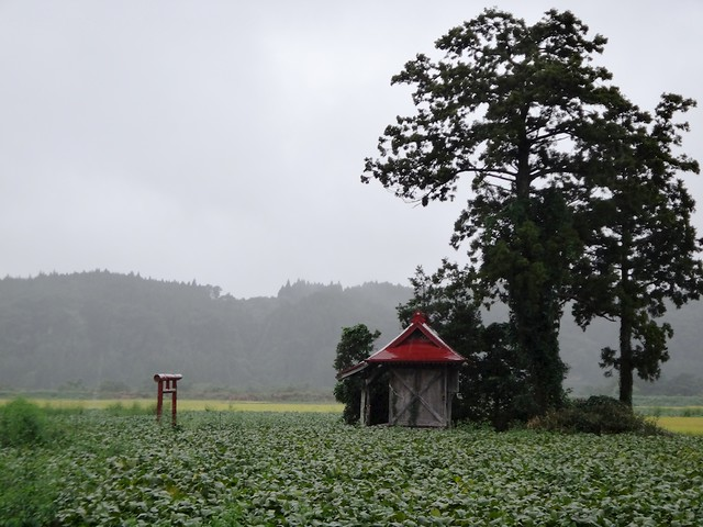 A shrine in a field
