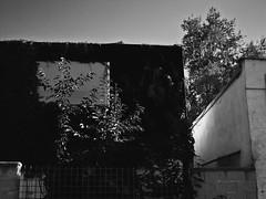 Foto_21.9.11-3 (Churechawa) Tags: original light shadow stilllife abstract art texture strange modern composition project creativity photography photo artist moody view prague artistic contemporary crossprocess fine creative picture poetic mind reality fujifilm lovely elegant delicate author graceful epic mystic stylish pictorial imaginative mastery lyric digitalfilm harmonious pleasing exr inventiveness f70exr eligiac