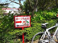 カープ田んぼ #1