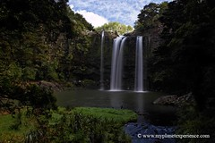 Whangarei falls - New Zealand (My Planet Experience) Tags: voyage trip travel newzealand water canon island falls waterfalls nz tasmania northisland kiwi antipode whangarei le oceania austral whangareifalls tasmanie nouvellezlande ocanie ledunord wwwmyplanetexperiencecom myplanetexperience