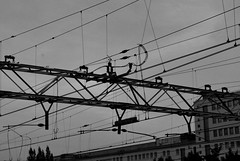Station Zwolle 3 - Overhead wires (woordenbrouwer) Tags: shadow blackandwhite holland lines station railway trainstation rails zwolle overheadwire bovenleidingen bovenleiding overheadwirestraintracks