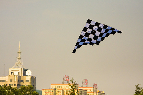 A Checkered Kite in a Hazy Sky