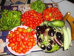 maria's harvest