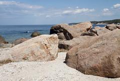 Glacial Erratics (sandy richard) Tags: usa newyork unitedstates geology wildwood wadingriver wildwoodstatepark newyorkstateparks sandyrichard longislandgeology sandrarichard