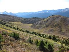 Opal Hills Peak descent, with view of valley and ridge (benlarhome) Tags: autumn canada nationalpark jasper hiking fallcolors hike alberta scramble malignelake scrambling opalhills