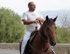 Calatabiano (CT) - Il cavaliere solitario (Luigi Strano) Tags: horses italy portraits europa europe italia sicily ritratti cavalli catania sicilia портреты calatabiano