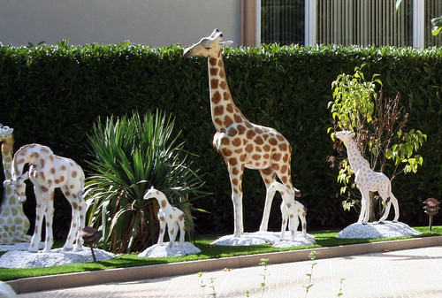Zoo House (23)
