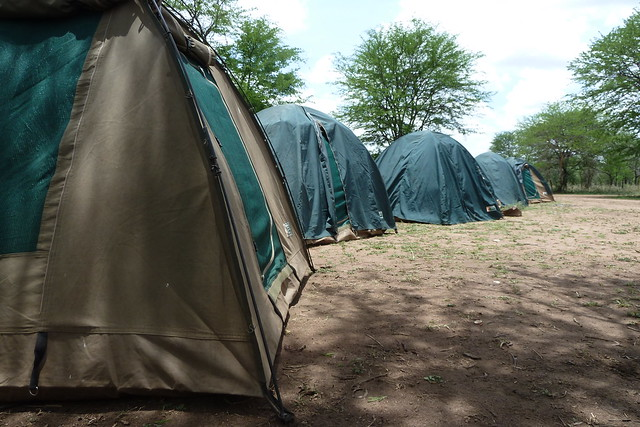 Tents in the Serengeti
