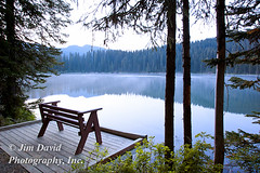 Empty Bench with View of Lake in Early Morning Light. (jim_david) Tags: morning trees lake nature bench relax montana quiet view outdoor seat branches stock scenic lifestyle peaceful calm shore silence sit serene inspirational relaxation contemplation littletherriaultlake