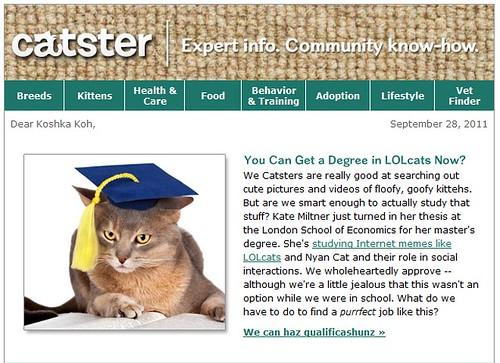catster928