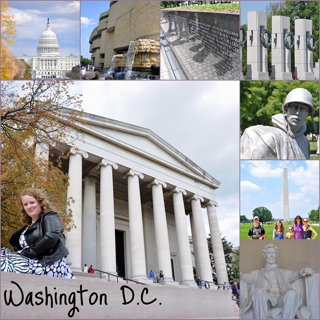 Washington D.C. Collage