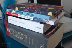 364/365 (sarahgraham7) Tags: reading flat books josh uni studying project365