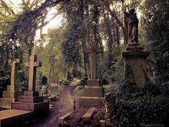 Highgate Cemetery (Triskaidekafobia) Tags: london grave angel cross camino path olympus cruz londres tumbas creu highgate tombs lpida highgatecemetery cam tumbes e420