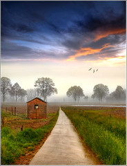 Wet Way (Jean-Michel Priaux) Tags: road house mist france window nature fog photoshop painting way landscape nikon peinture alsace paysage hdr chemin cabane littlehouse wow1 ried d90 priaux ebersheim doublyniceshot doubleniceshot mygearandme ringexcellence