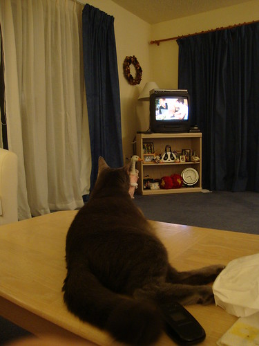 watching tv