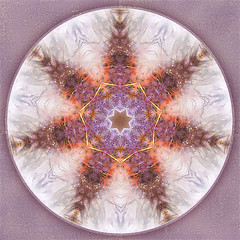 We Are Here (SueO'Kieffe) Tags: digital crystal mandala meditation spiritual ascension auraliteamethyst