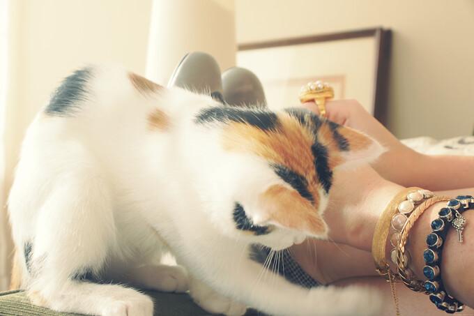 kittycotten-lorisshoes3
