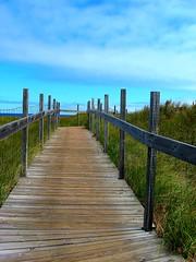 Pathway to the big lake (Visual Images1) Tags: lake fence path lakesuperior picnik