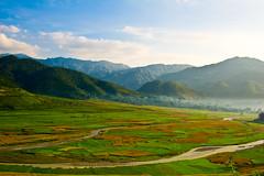 Tay Bac Vietnam - Tu Le, Yen Bai (ChinnyPlus) Tags: nature vietnam tule yenbai distagont235 distagon352zf taybac zf2 nikond3s