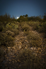 moonlight, Tucson, AZ (philippe*) Tags: arizona usa nikon d2x