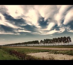 Cloudscape (Focusje (tammostrijker.photodeck.com)) Tags: blue trees sky holland nature netherlands clouds landscape row line cloudscape hazerwoude