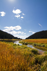 Mountain meadow (_jphayes_) Tags: mountain colorado photos places rockymountainnationalpark habitats streamsandrivers