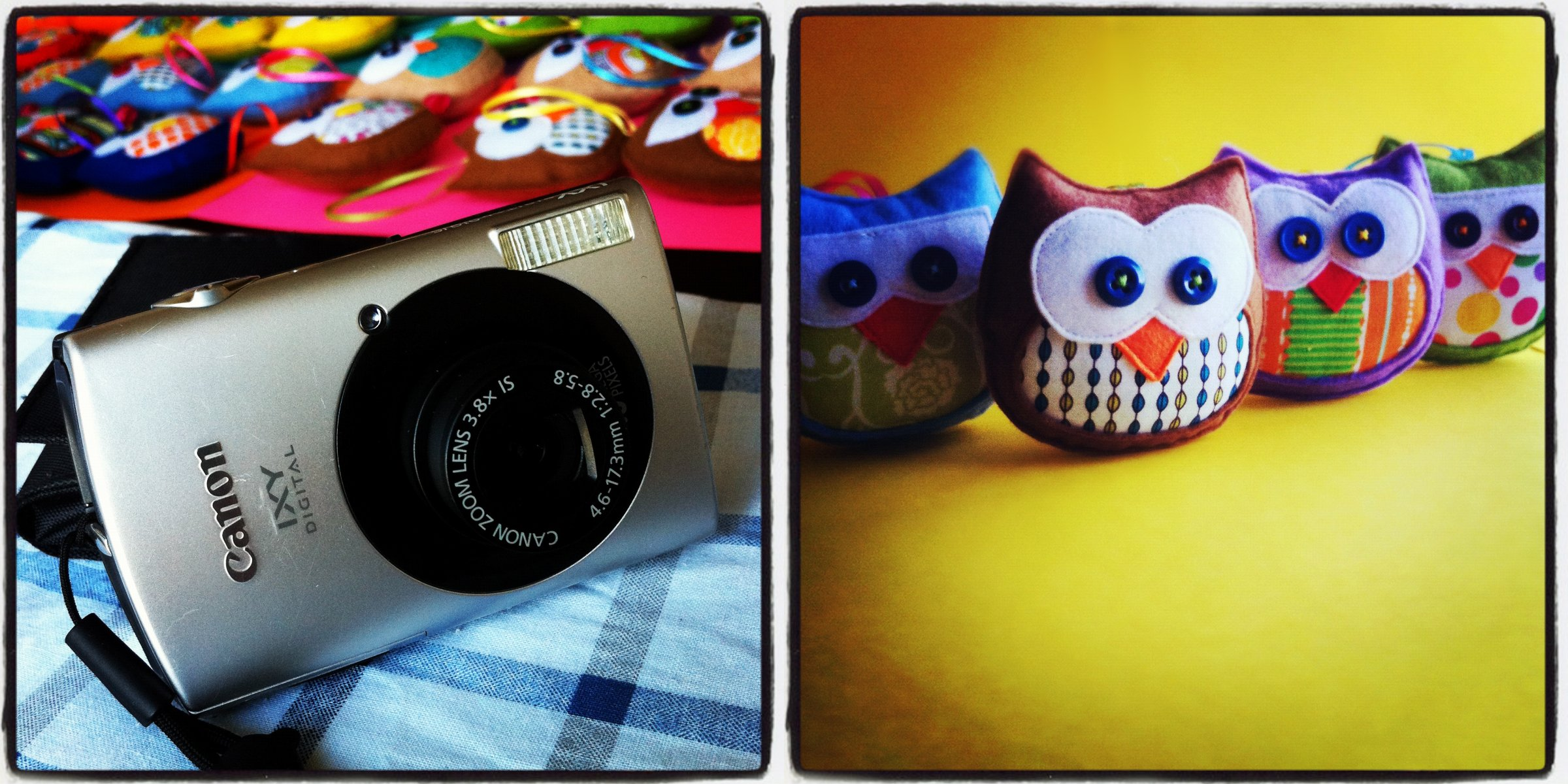 Owls Step 8