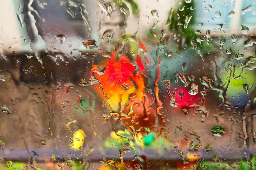 Rainy Day Rapture © Harold Davis