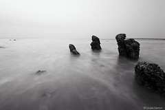 234 | 365 (Louise Denton) Tags: ocean longexposure sea seascape rocks darwin 365 mangroves mindilbeach