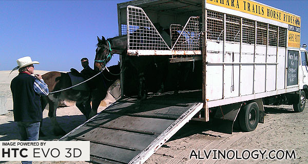 Allen leading out his horses which we will be riding on